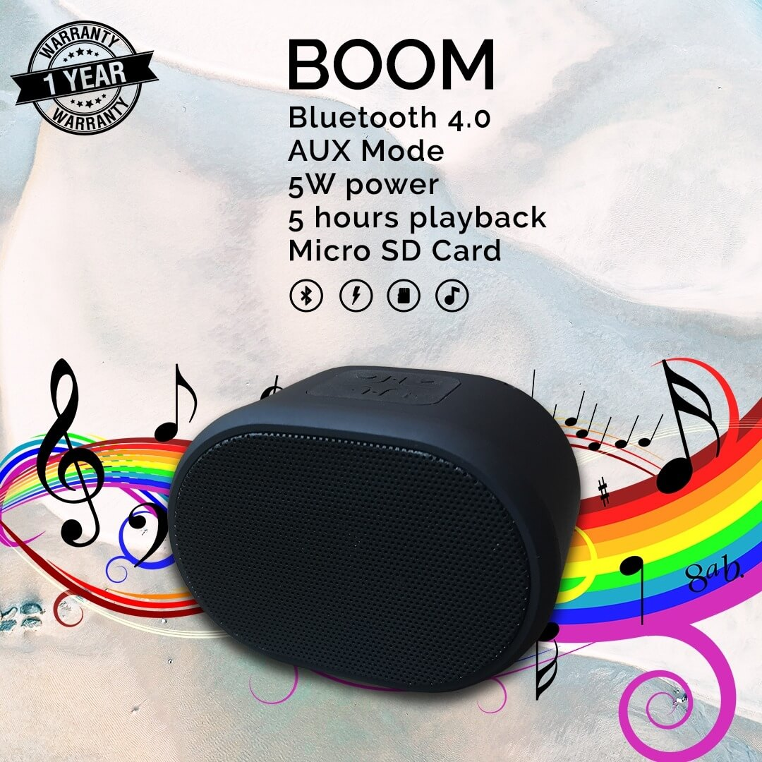 Boom Portable Mini Speaker